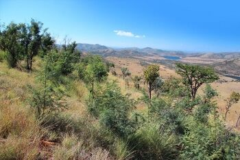 Pilanesberg Game Reserve, North West