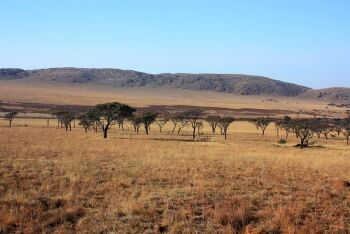 Kgaswane Mountain Reserve, Rustenburg, North West